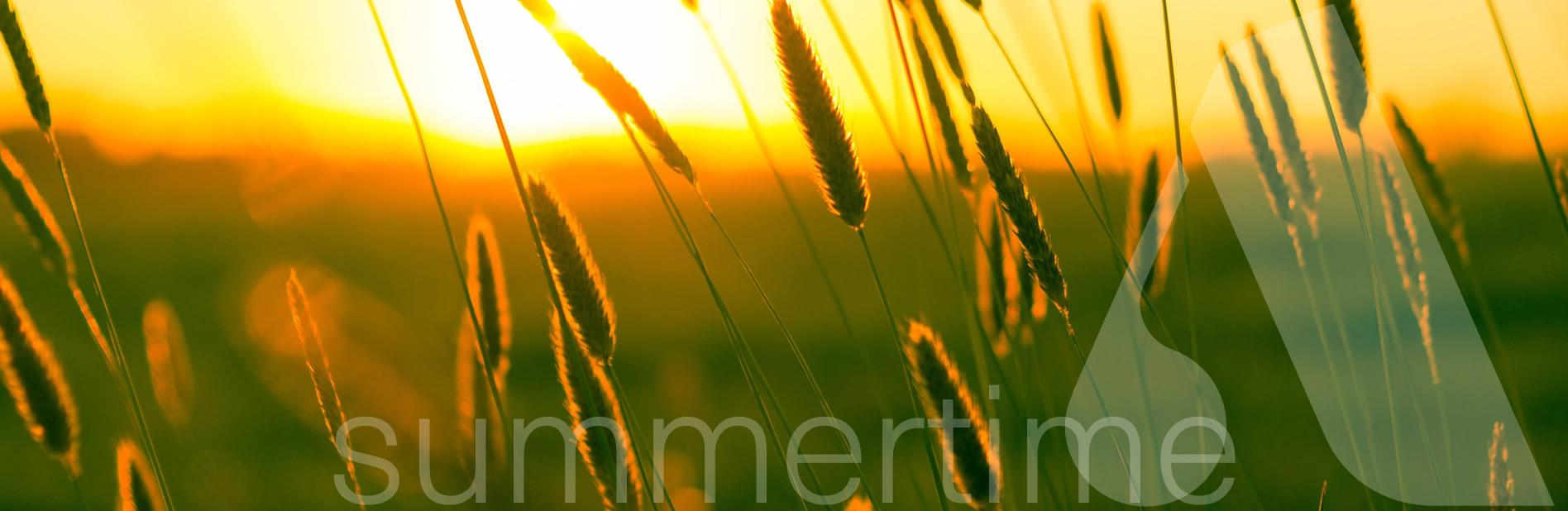 Summertime_B3